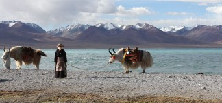 Nam-Tso, Heavenly Lake Trekking